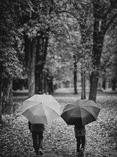 Kamarád do deště