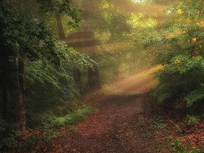 Na ceste za slnkom