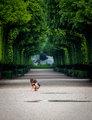 Sama v parku
