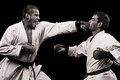 športové karate