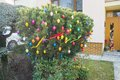 Veľkonočný stromček