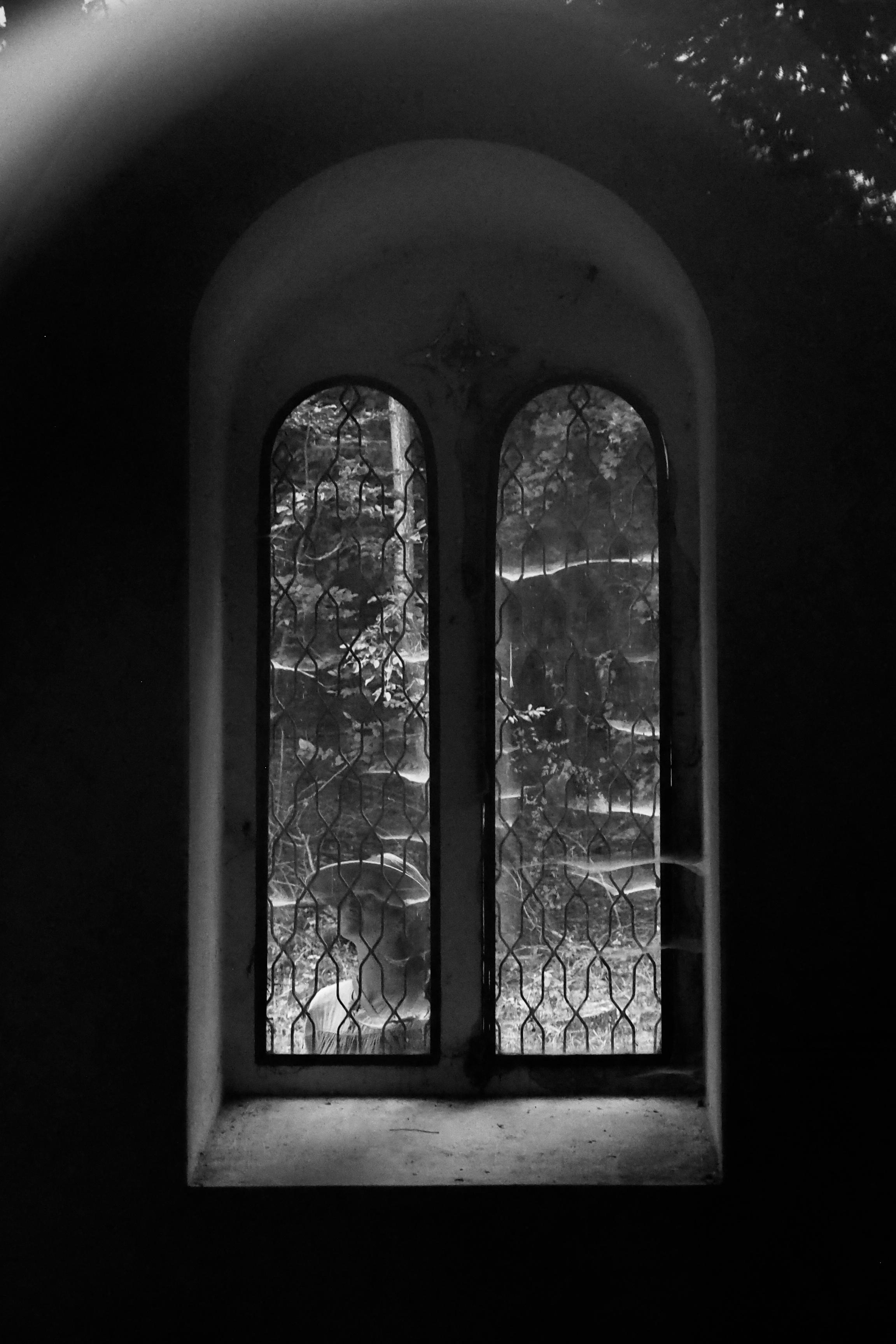 Dáma za oknom