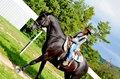Kráska a kôň
