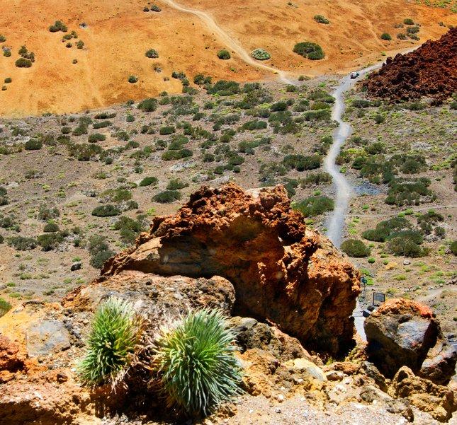 Cesta na El Teide