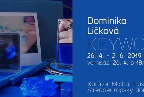 Dominika Ličková /SK/ – Keywords