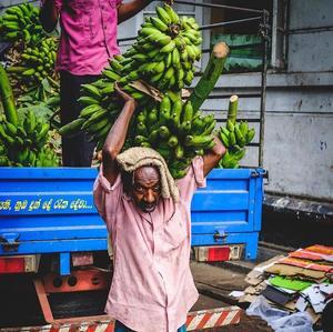 Nosič banánov