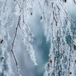 Zima za oknom