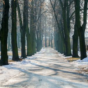 Prechádzka po parku