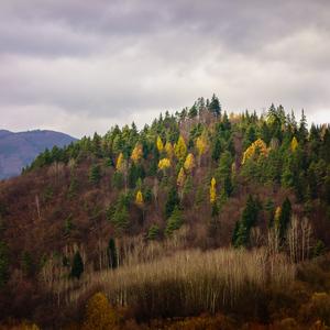 Jeseň pri Lubochni