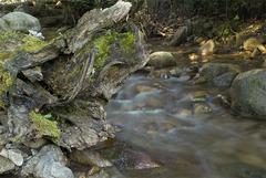 Voda v pohybe