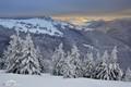 Krajina snehu
