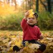 Autumn in Pezinok