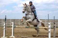 jedna konská