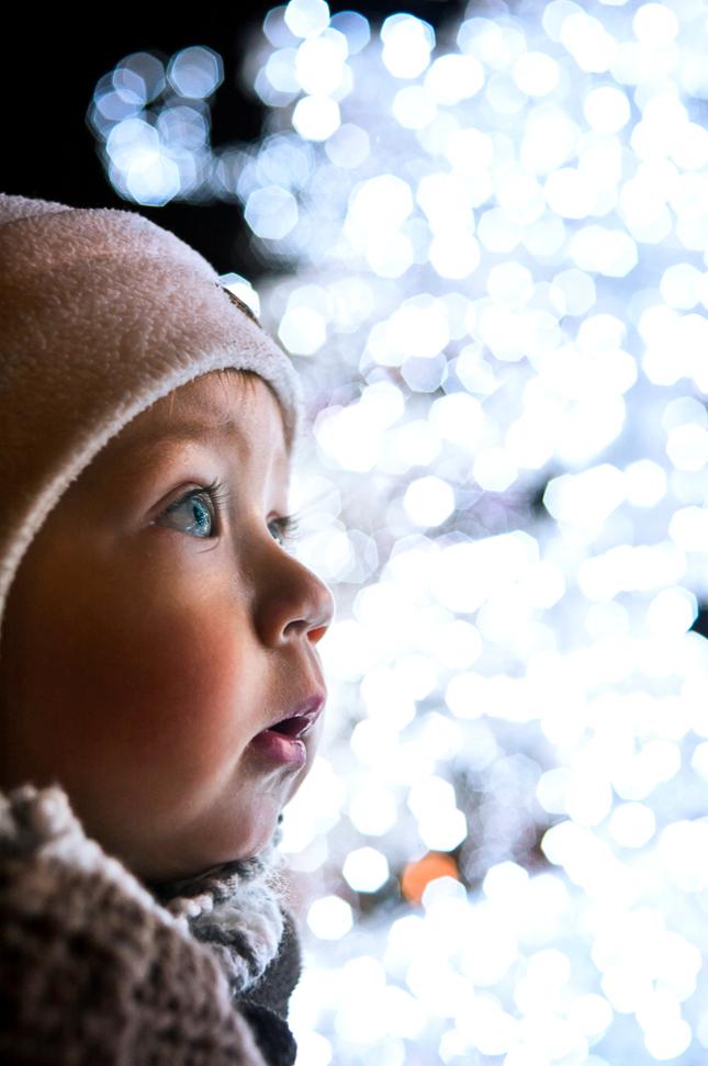 Zimny anjelik