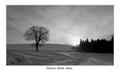 čierno-biele ráno