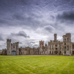 Duckett's Grove