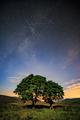 Perzeidy - Meteorický roj 2017