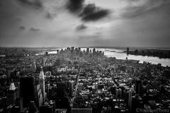 concrete jungle NY