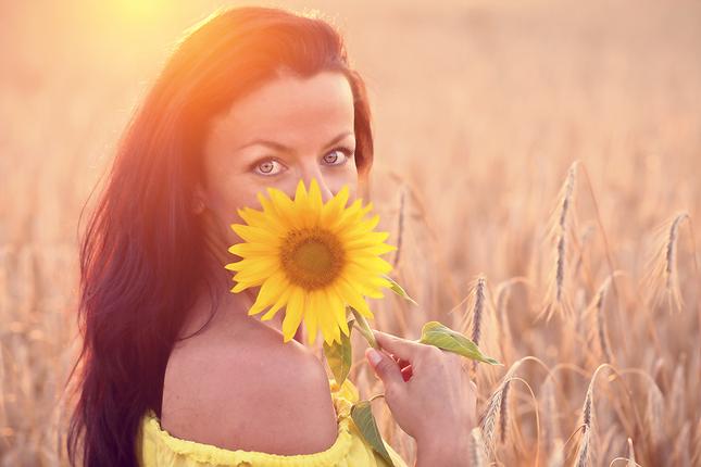 slnečnica