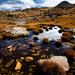 Jesenne Pyreneje