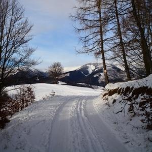 zimná cesta ...