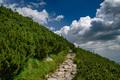 Der horský chodník