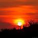 novembrový západ slnka