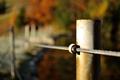 Spútaná jeseň