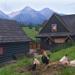 Sliepky pod Tatrami