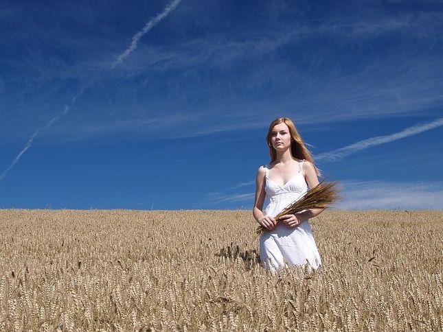 V obilí