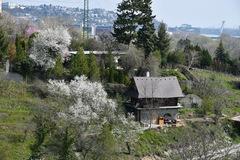 Jar v Doline Jurigrad