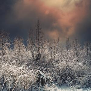 Ešte zima