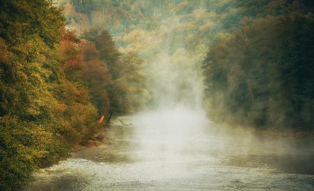 Na rieke