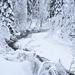 Zimná rieka 1