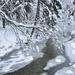 Zimná Rieka 6