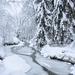 Zimná rieka 4