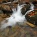 Jesenný potok 2