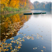 Autumn and its colours