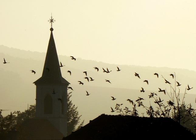 Nebesky stražcovia