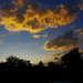 zlaté oblaky
