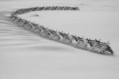 tvary zimy