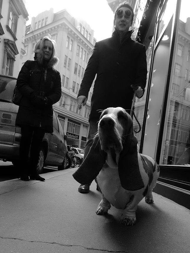 V uliciach Viedne