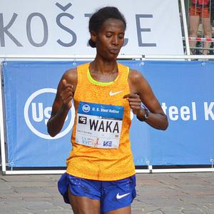 WAKA WAKA this time for Africa