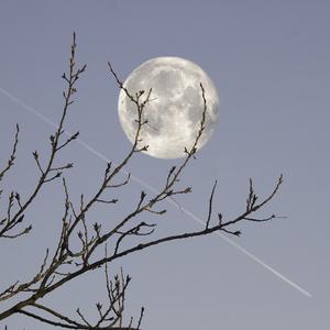 Mesiac v splne