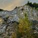 V starom kamenolome