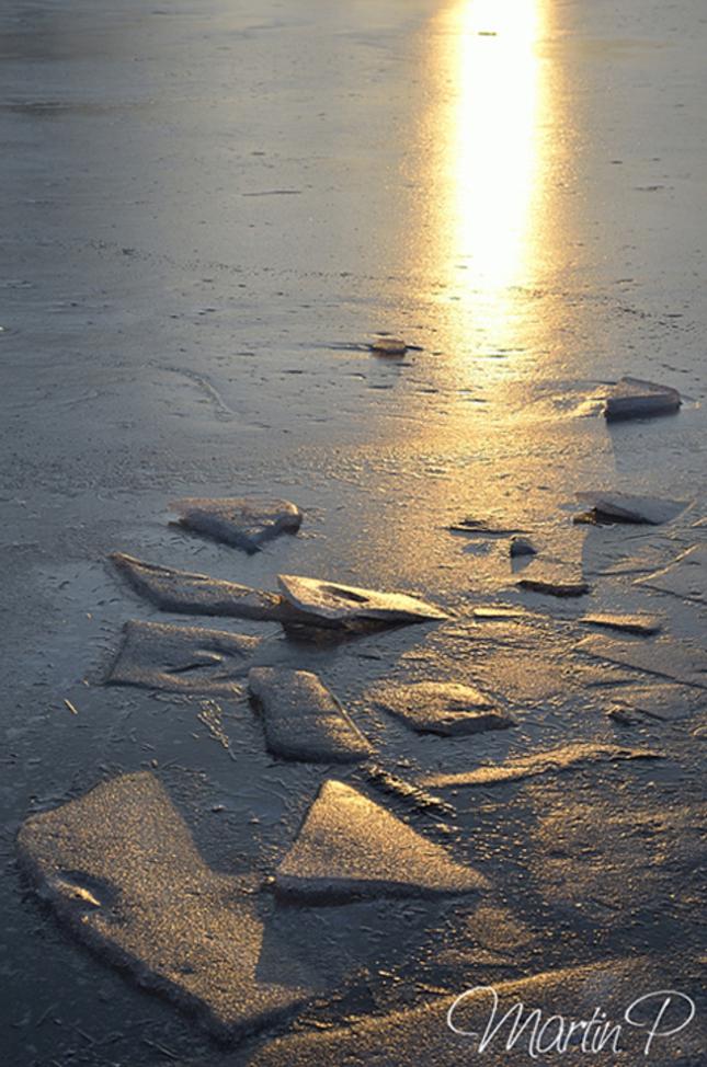 Zima na rybniku1