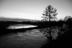 Strom a voda