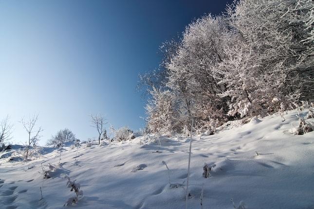 Slovenská zima