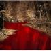 River of blood in Garden of Eden