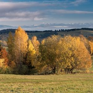 V jeseni na paši